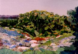 "Hill Country Collage, Torn Paper Collage on paper, 29"" x 37"", $1200"